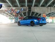 Audi-RS5-Matte-Black-RF2-5