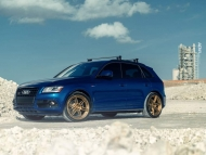 adv1-audi-sq5-gold-bronze-wheels-track-function-lowered-p_w940_h641_cw940_ch641_thumb