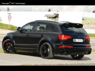 audiq7_tras_copyright-800x600