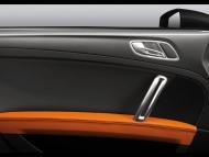 Audi-TT-Clubsport-Quattro-Study-Door-Panel.jpg