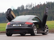 Audi-TT-Coupe-with-LSD-Wing-Doors-Rear-Angle.jpg