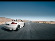 Nothelle-Audi-TT-Rear-Angle-Top-Down.jpg