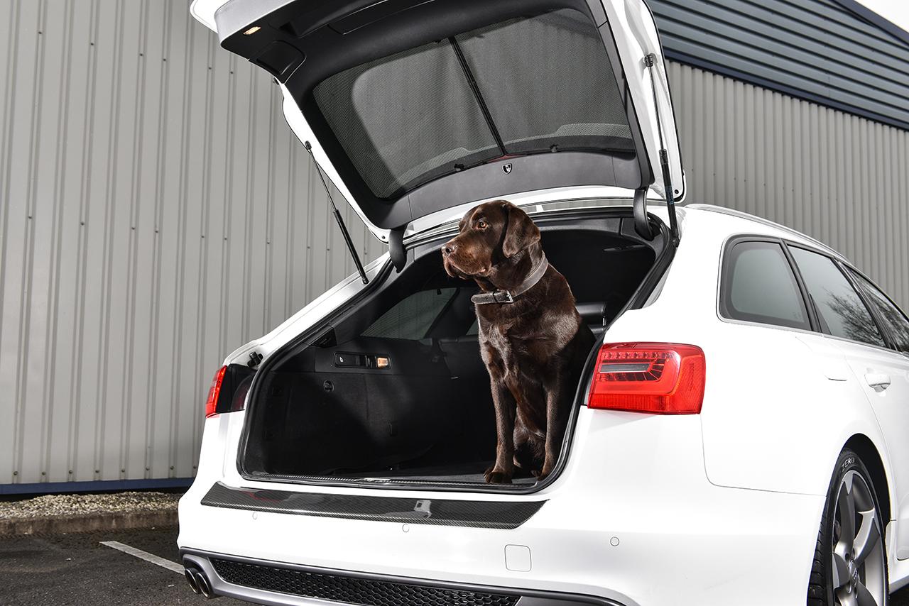 Car Shades Launches Bespoke Audi A6 Avant Kit